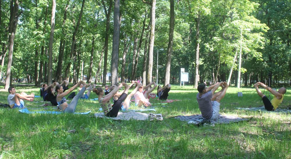 Истинный Смысл Йоги, йога для начинающих, йога видео, йог видео, виды йоги